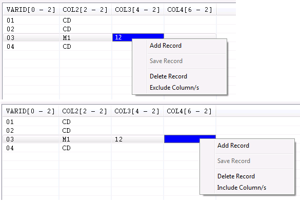 How to utilize the Common Record Editor – Heirloom Computing